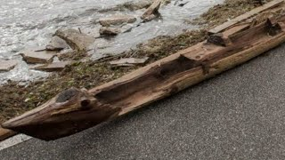 Strange Object That Washed Ashore During A Hurricane Could Be Hundreds Of Years Old