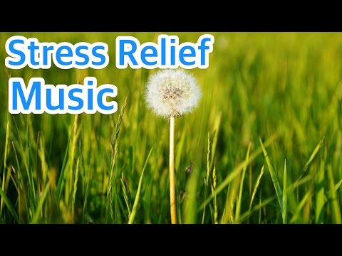 9 HOURS of Mindfulness Relaxing Piano Music for Stress Relief. Soothing Background Music