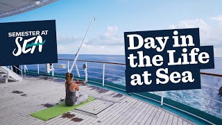 Day in the Life of a College or Gap Year Student at Semester at Sea