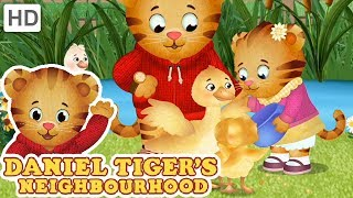 Daniel Tiger - My Baby Sister is the Best! | Videos for Kids