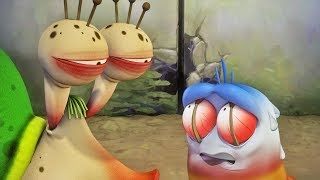 LARVA - STARING CONTEST | Cartoons For Children | Larva Full Movie | Larva Cartoon | LARVA Official