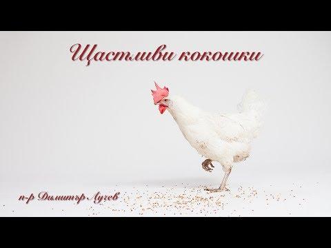"""п-р Димитър Лучев """"Щастливи кокошки"""", или защо християните често са нетолерантни към чуждото мнение"""
