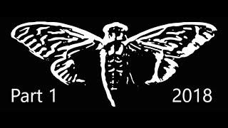 Cicada 3301 2018 Part 1 | MoTV