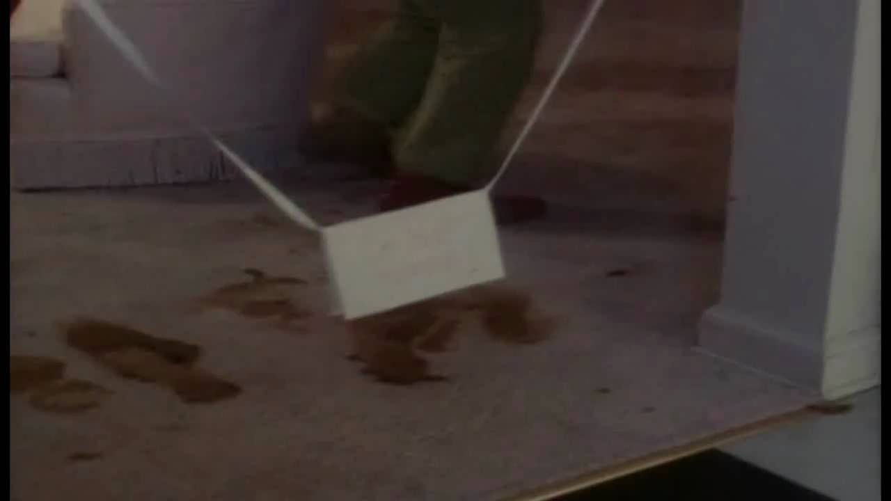 Drop Dead Fred Got Some Dog Poo Youtube