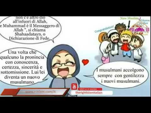 Comprensione dell'ISLAM per principianti