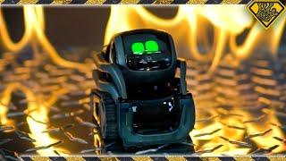 Calli Got a Robot