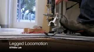 Legged Locomotion