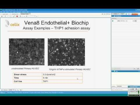 Cellix Webinar: Vena8 Endothelial+TM Biochip