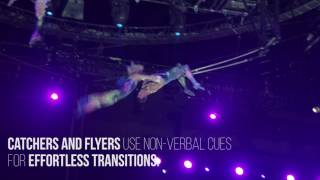 The Flying Trapeze - Ringling Bros. and Barnum & Bailey