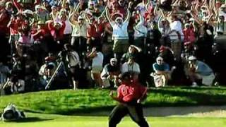 Is This The Best Tiger Woods Video Ever? [2014]