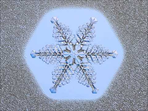 Birth of a Snow Crystal