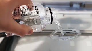 Making Friends With An Owl