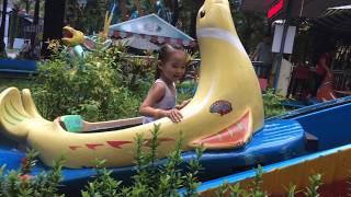 Stin Dâu Chơi Hải Cẩu Vượt Thác Tại Đầm Sen Park