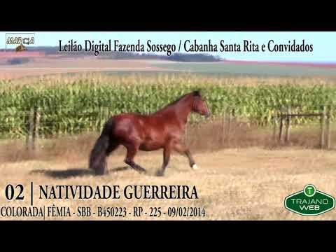 LOTE 02 | NATIVIDADE GUERREIRA
