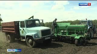 Уборочная компания в регионе недавно завершилась, но аграрии уже строят планы на будущий год
