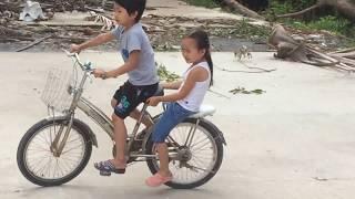 Stin Dâu - Anh hai chở em Dâu đi xe đạp