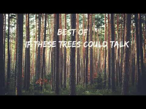 Best of If These Trees Could Talk