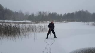 Ziemas cope (06.11.2016) ledus 3.1cm