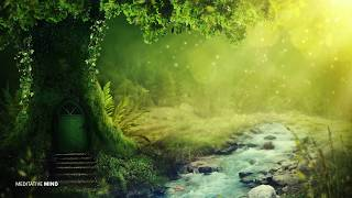 ENCHANTED MYSTICAL FOREST MUSIC || Positive Happy Stress Relieving Music, Sounds of Nature + Birds