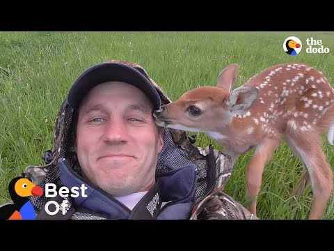 Baby Animals Are So Grateful These Guys Saved Their Lives | The Dodo Best Of