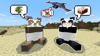 5 Điều Thú Vị Bạn Chưa Chắc Đã Biết Trong Minecraft PE 1.8 - Phantom Sợ Mèo ???
