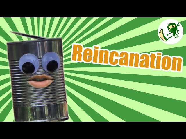 Reincanation:  The Afterlife Of An Ordinary Can - Green Ninja Show