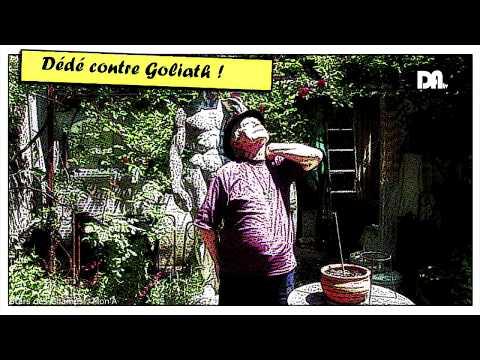 Drôme Ardèche TV - Stars Des Champs - Mon'A