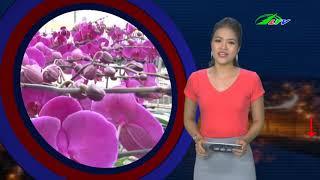 Dùng SÚNG Bắn CHẾT Nữ Sinh Rồi Vào Rẫy TỰ SÁT | Tâm Điểm 365 | Lâm Đồng TV