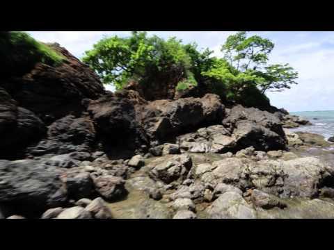 Isla Palenque, Panama | Secrets of the Coastline | The Resort at Isla Palenque