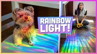 How to Make a Rainbow Room - DIY
