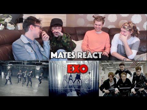 Mates React to EXO (Non Kpop Fans)