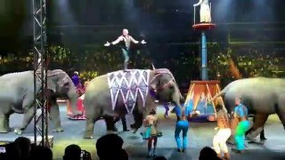 Hubby's bday vlog | Circus Extreme | Ringling Brothers | 2016