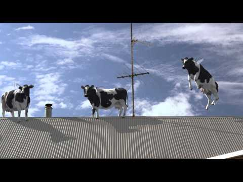 Liddells Lactose Free Television Commercial (15 seconds)