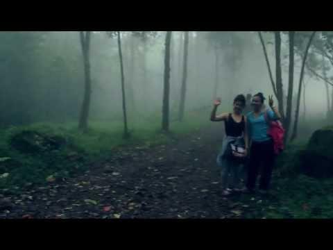 Baixar Bosque Maldito 4