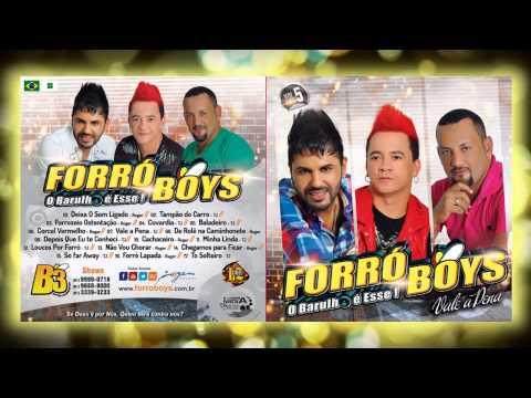 Baixar Forró Boys Vol. 5 - 16 Forró Lapada 2015