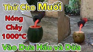 Lâm Vlog - Thử Cho MUỐI Nóng Chảy 1000 độ C Vào Trong Quả Dưa Hấu và Quả Dừa | 1000 Degree SALT