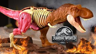 T.REX ANATOMY KIT! - Special Halloween Unboxing