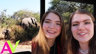 I Went On An African Safari! / Aud Vlogs