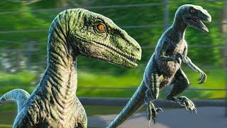 Jurassic World Evolution: Huge Raptor Pack Loose in the Park