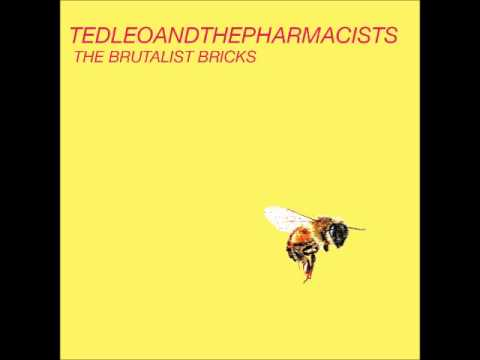 02 Mourning In America - Ted Leo and The Pharmacists