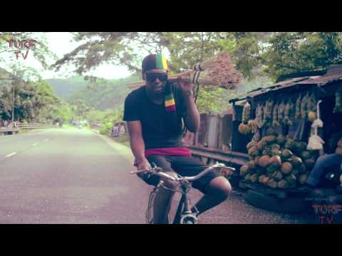 Busy Signal - Money Flow / Greetings (Ribbidibi)