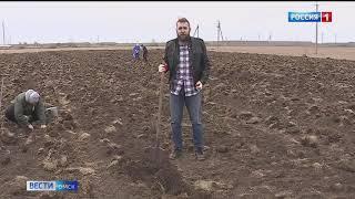 В деревне Сосновка волонтеры провели экологическую акцию