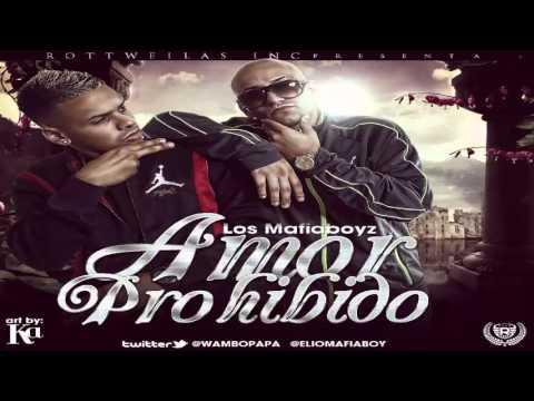 Amor Prohibido ~ Elio y Wambo (Los Mafiaboyz) ◄REGGAETON 2013►