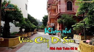 Không Thể Bình Luận ở vườn Cây Cảnh Nghệ Thuật Di Sản của anh Toàn Đô La - Việt Trì