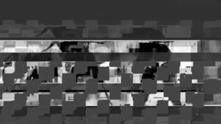 ROGAL DDL - FANTASTISZ TEMPO (666bpm) / NWS
