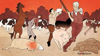 Animal Farm Video Summary