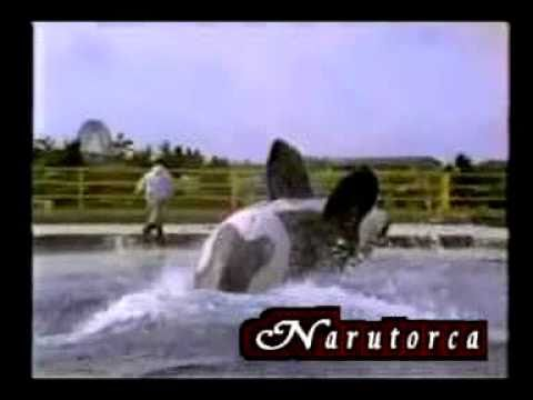 keiko rare footage {Philippe coste ~ Dance with me} (new)