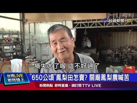 中國禁台灣鳳梨 南高屏鳳梨農苦喊「政治操作」