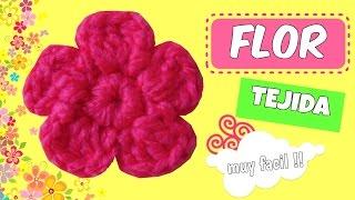 Flores Tejidas A Crochet Faciles De Tejer 7 Music Videos