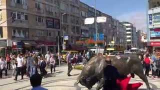 Troll Aras Kadıköy Boğasını Coşturuyor! Aras Karafil